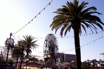 Disneyland California Adventure Summer, palm tree perfect.