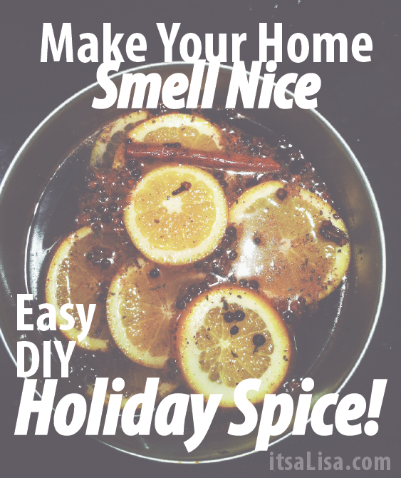 Holiday Spice Recipe | Make Your Home Smell Nice! | itsaLisa.com