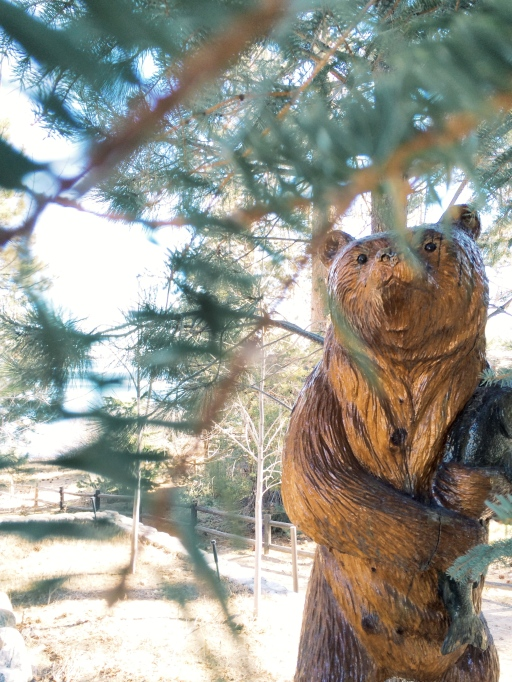 Big Bear in the Woods | itsaLisa.com
