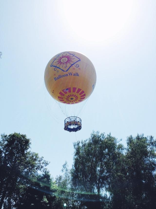 San Diego Safari Park Hot Air Balloon | itsaLisa.com