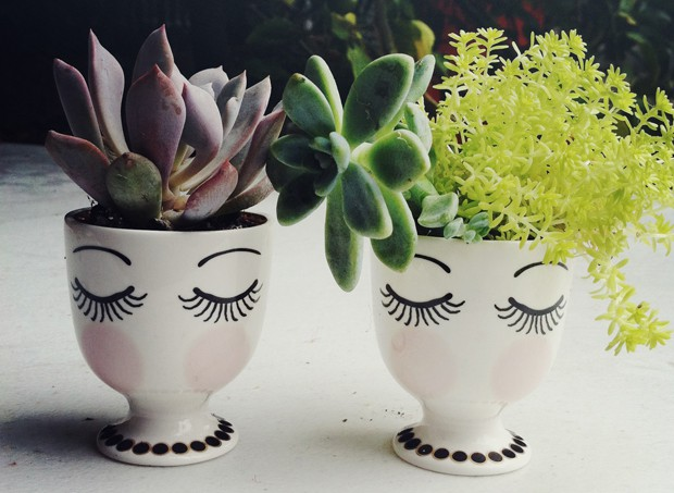 egg-cups-succulents