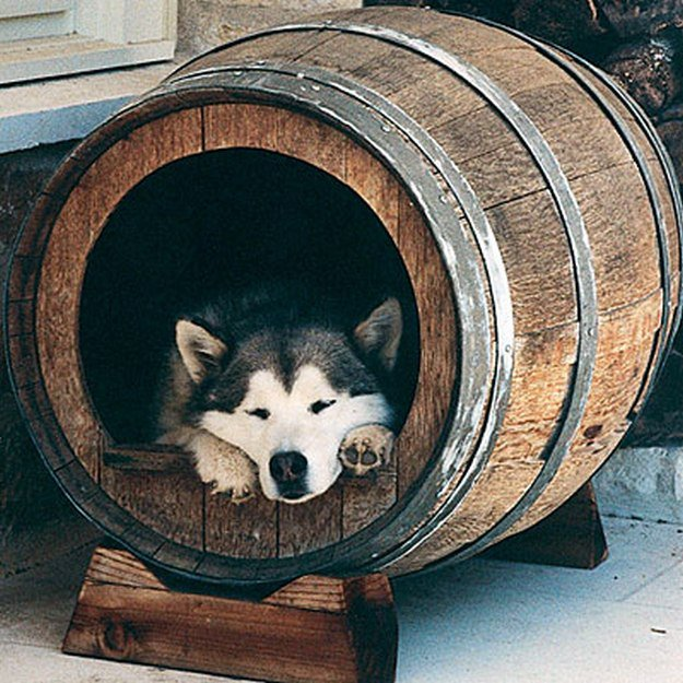 oak barrel dog house | Diy Dog House for Man's Best Friend | 10 Man Cave Ideas For Real